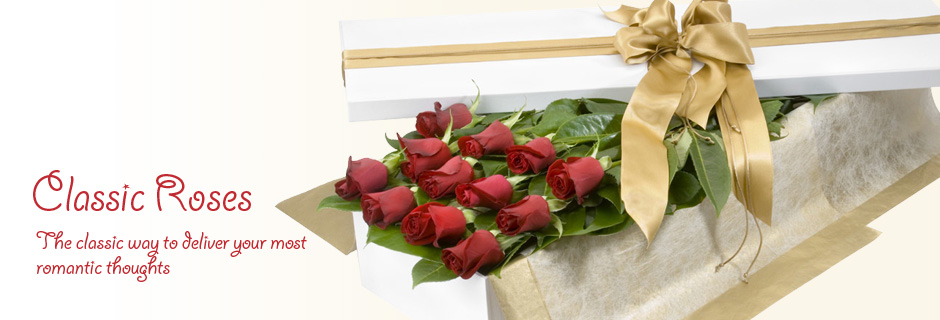 Classic roses - the classic way to deliver your most romantic thoughts