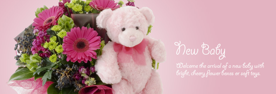 New baby - welcome the arrival of a new baby with bright, cheery flower boxes or soft toys