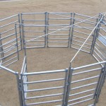 Cattle Yard Design Service
